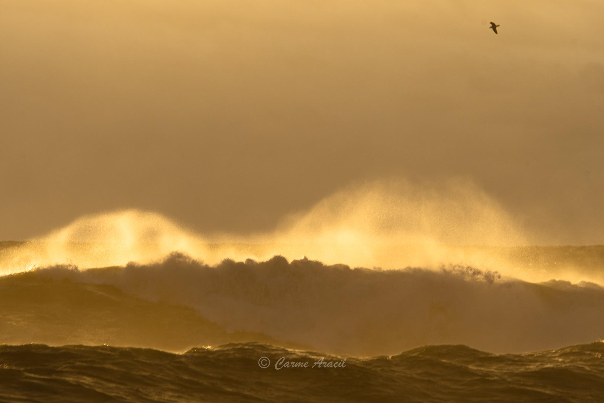 Filomena y el mar
