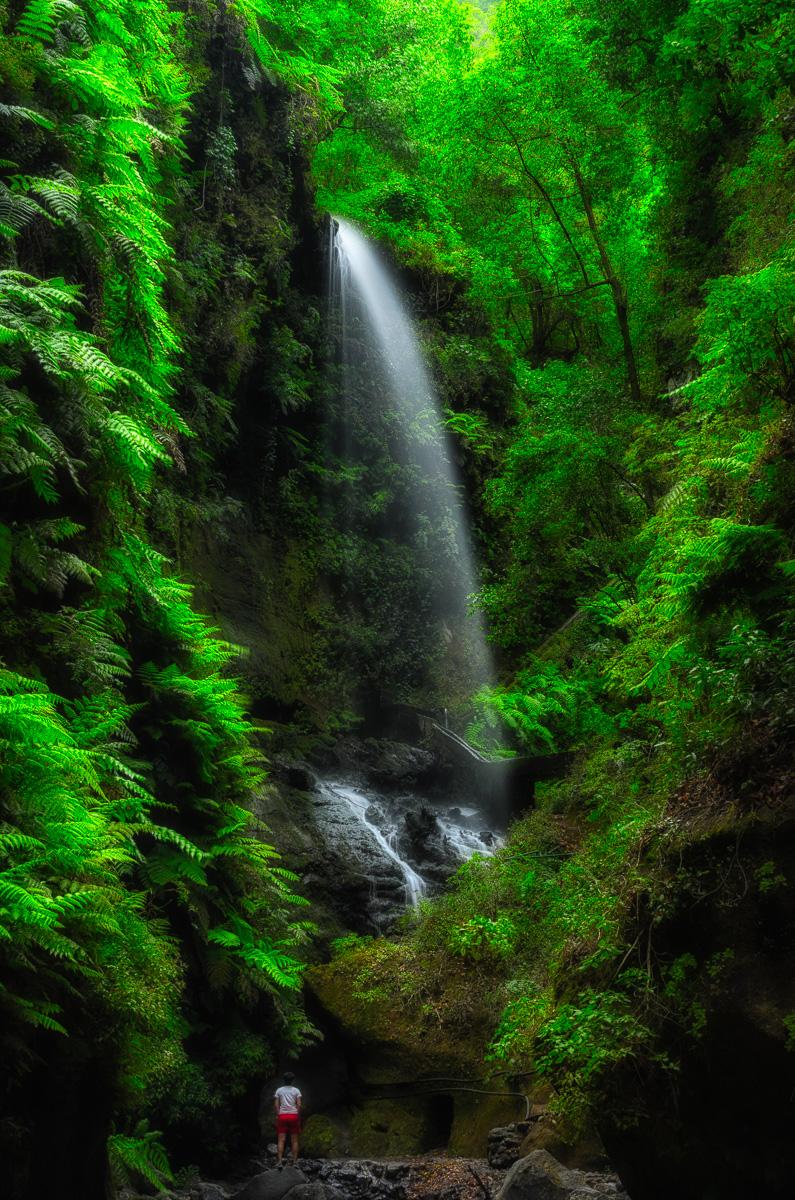 Salto de agua en el Bosque de los Tilos