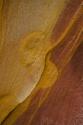 Colores de Jaizkibel