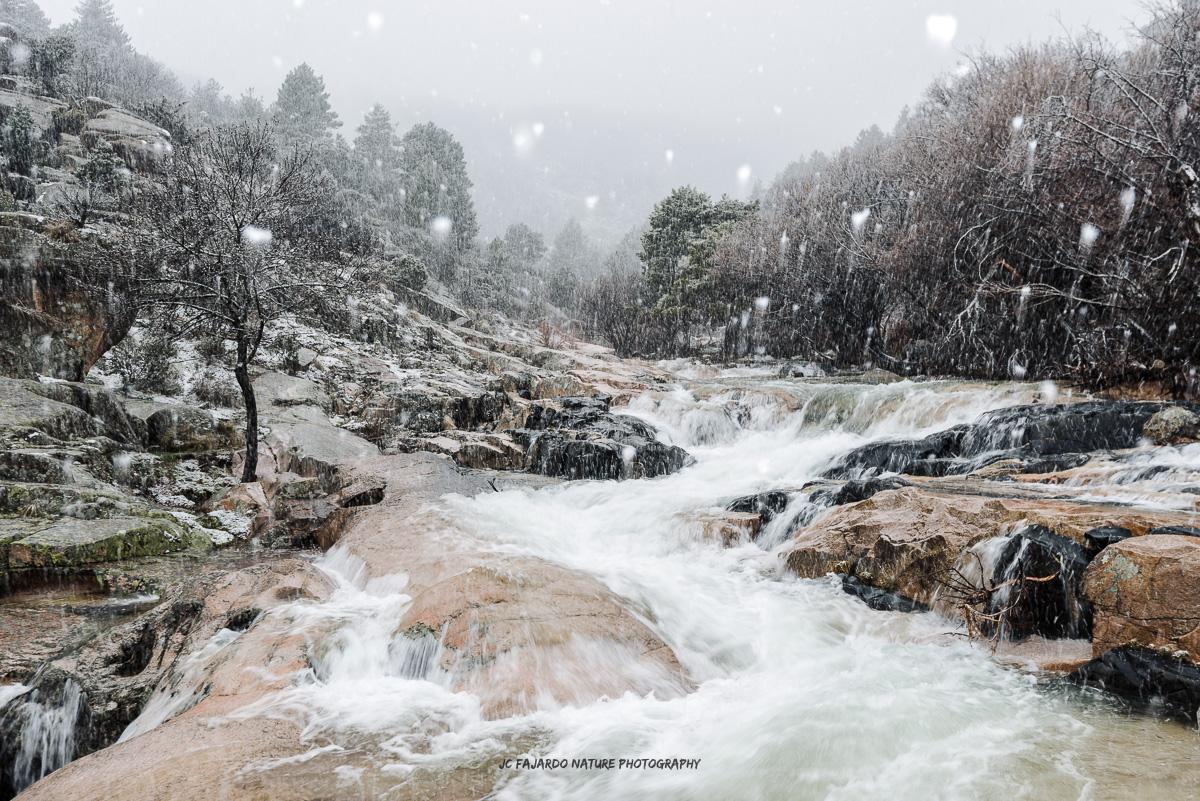Nieve sobre piedras