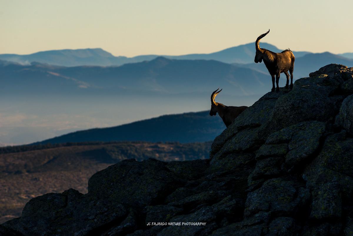 Los guardianes de las montañas