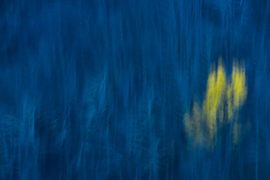 Vibración en azul y amarillo