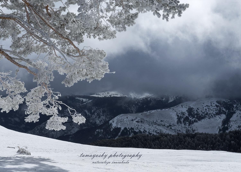 Juego monocolor entre nubes y nieve