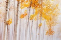 Sinfonía de otoño